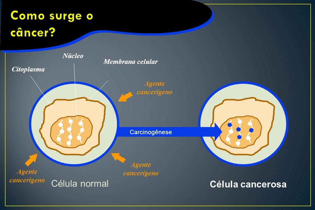 Célula normal Membrana celular Célula cancerosa Núcleo Citoplasma Agente cancerígeno Carcinogênese
