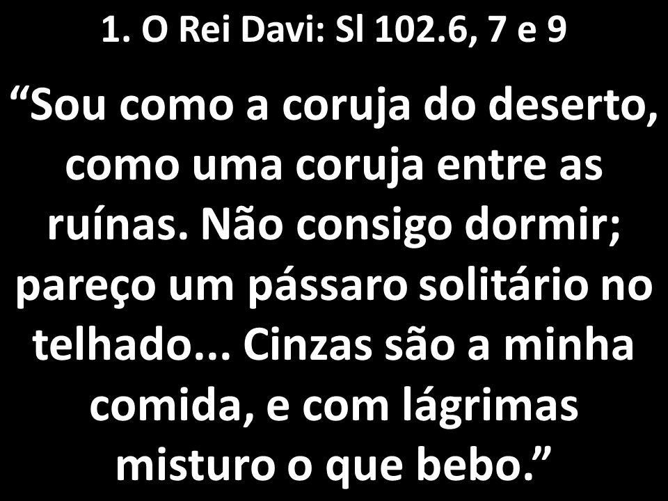 """1. O Rei Davi: Sl 102.6, 7 e 9 """"Sou como a coruja do deserto, como uma coruja entre as ruínas. Não consigo dormir; pareço um pássaro solitário no telh"""