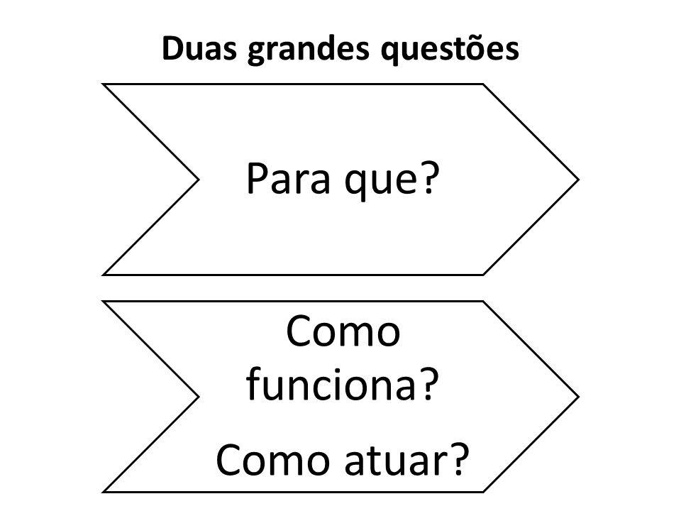 Duas grandes questões Para que? Como funciona? Como atuar?