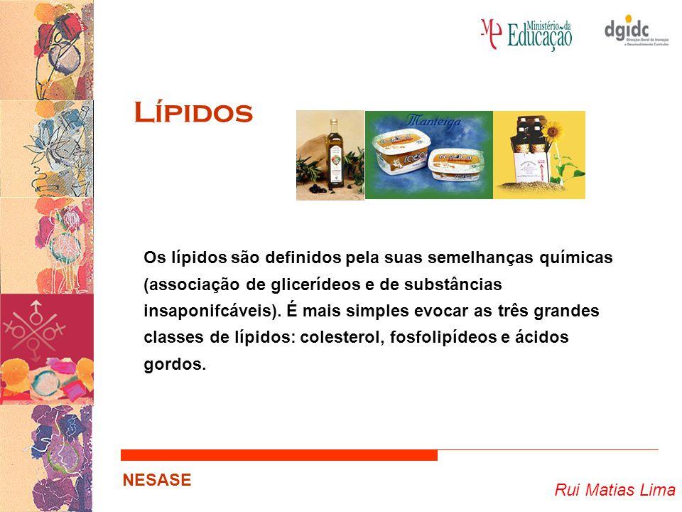 Rui Matias Lima NESASE Lípidos Os lípidos são definidos pela suas semelhanças químicas (associação de glicerídeos e de substâncias insaponifcáveis). É