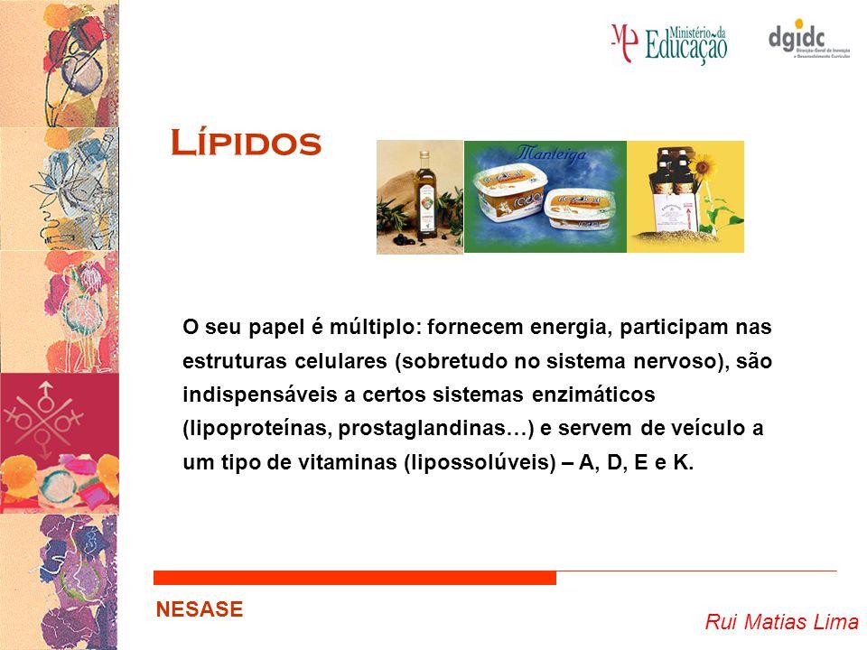 Rui Matias Lima NESASE Lípidos O seu papel é múltiplo: fornecem energia, participam nas estruturas celulares (sobretudo no sistema nervoso), são indis