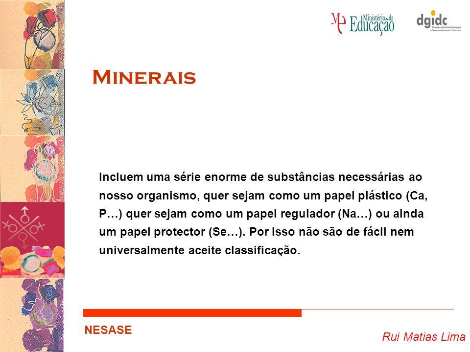 Rui Matias Lima NESASE Minerais Incluem uma série enorme de substâncias necessárias ao nosso organismo, quer sejam como um papel plástico (Ca, P…) que