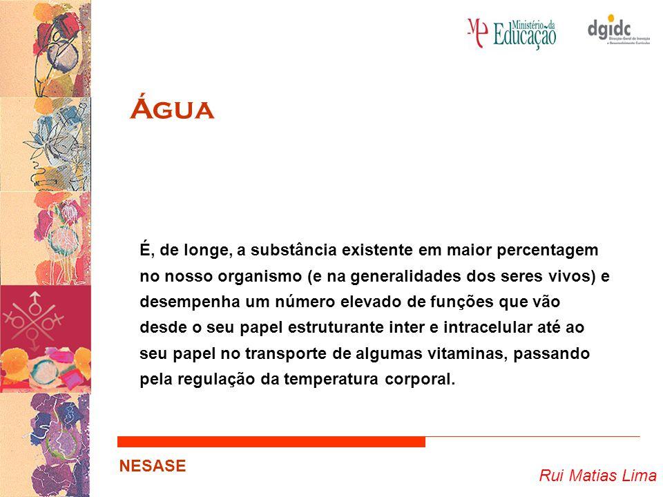 Rui Matias Lima NESASE Água É, de longe, a substância existente em maior percentagem no nosso organismo (e na generalidades dos seres vivos) e desempe