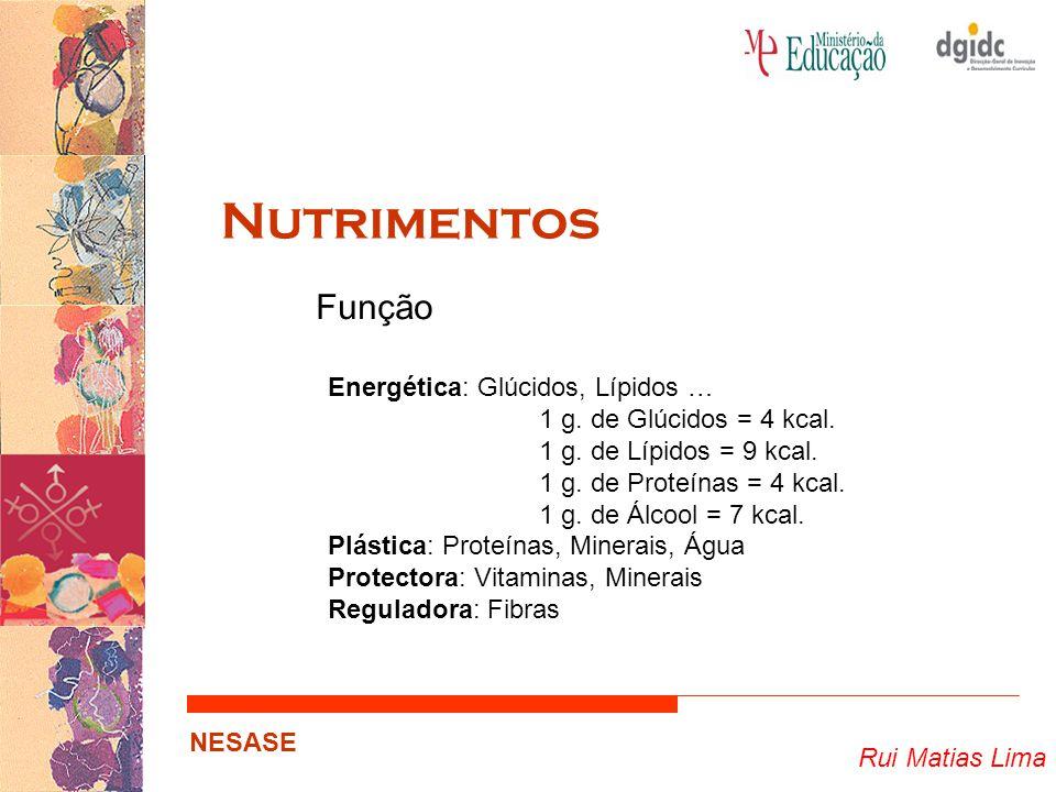 Rui Matias Lima NESASE Nutrimentos Função Energética: Glúcidos, Lípidos … 1 g. de Glúcidos = 4 kcal. 1 g. de Lípidos = 9 kcal. 1 g. de Proteínas = 4 k