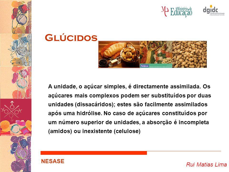 Rui Matias Lima NESASE Glúcidos A unidade, o açúcar simples, é directamente assimilada. Os açúcares mais complexos podem ser substituídos por duas uni