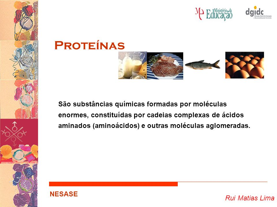 Rui Matias Lima NESASE Proteínas São substâncias químicas formadas por moléculas enormes, constituídas por cadeias complexas de ácidos aminados (amino
