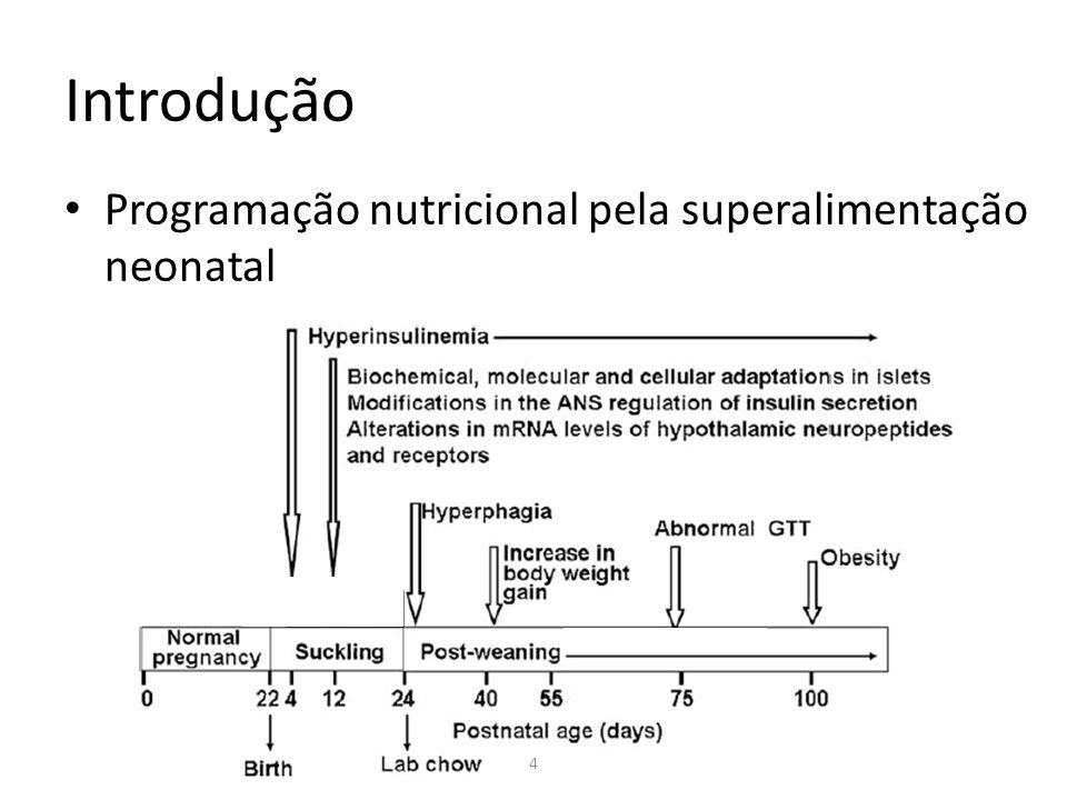 Introdução Programação nutricional pela superalimentação neonatal 4