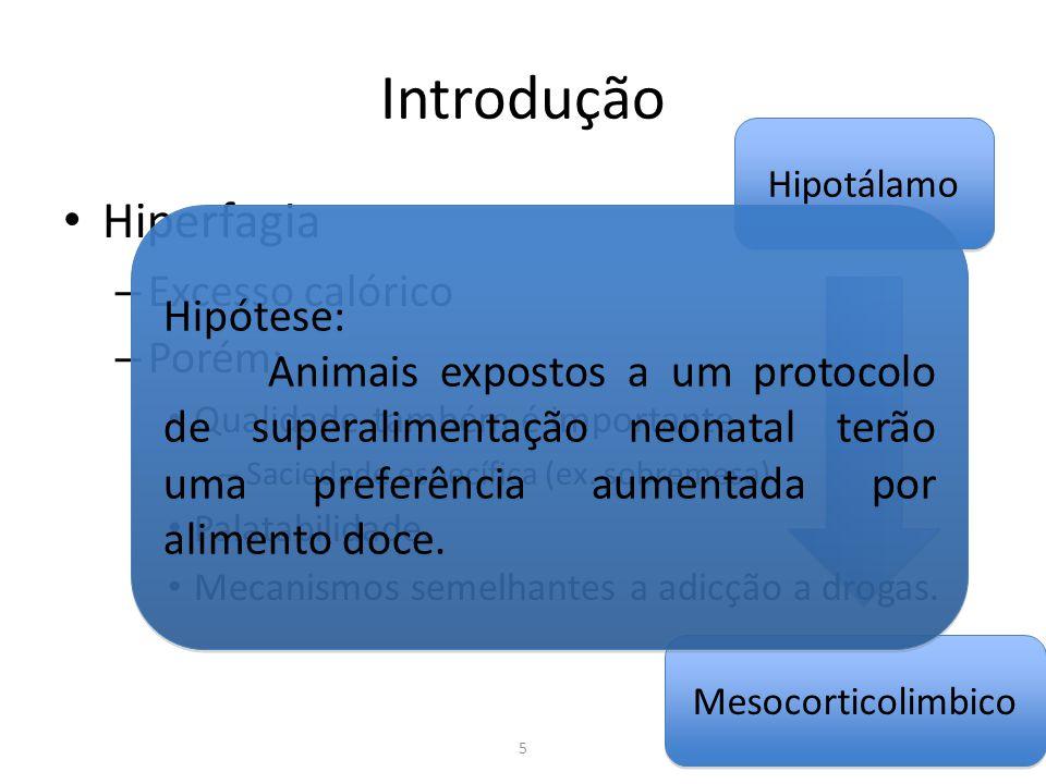 Mesocorticolimbico Hipotálamo Introdução Hiperfagia – Excesso calórico – Porém: Qualidade também é importante – Saciedade específica (ex. sobremesa) P
