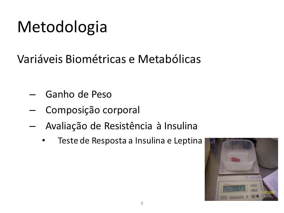 Metodologia Variáveis Biométricas e Metabólicas – Ganho de Peso – Composição corporal – Avaliação de Resistência à Insulina Teste de Resposta a Insuli