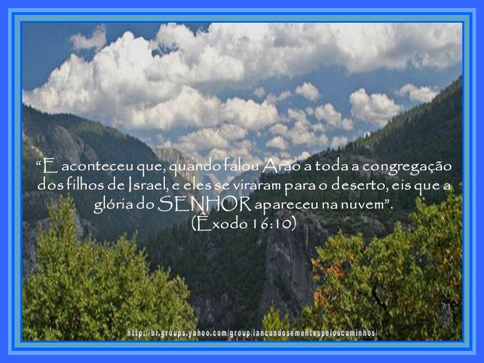 E aconteceu que, quando falou Arão a toda a congregação dos filhos de Israel, e eles se viraram para o deserto, eis que a glória do SENHOR apareceu na nuvem .