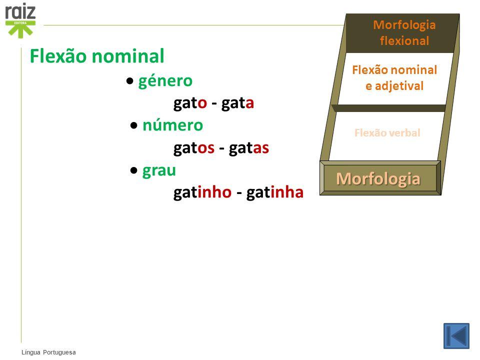 Língua Portuguesa Flexão nominal  género gato - gata  número gatos - gatas  grau gatinho - gatinha Morfologia Morfologia flexional Flexão nominal e