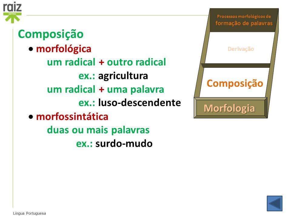 Língua Portuguesa Composição  morfológica um radical + outro radical ex.: agricultura um radical + uma palavra ex.: luso-descendente  morfossintátic