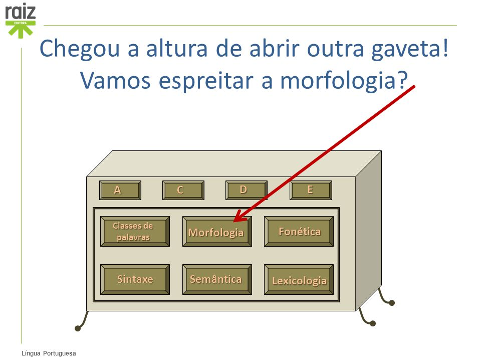 Língua Portuguesa Classes de palavras Fonética Sintaxe Semântica Lexicologia A C D E Morfologia Chegou a altura de abrir outra gaveta! Vamos espreitar