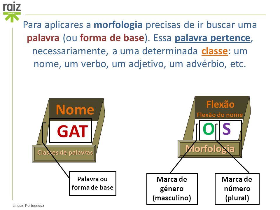OS Flexão Flexão do nome Morfologia GAT Nome Classes de palavras Para aplicares a morfologia precisas de ir buscar uma palavra (ou forma de base). Ess