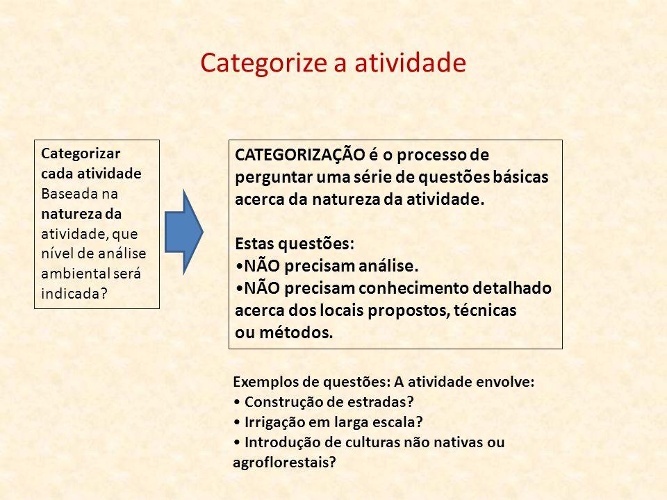 Categorize a atividade Categorizar cada atividade Baseada na natureza da atividade, que nível de análise ambiental será indicada? CATEGORIZAÇÃO é o pr
