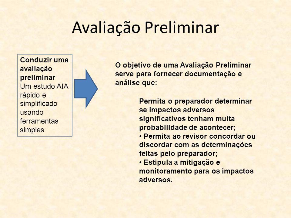 Avaliação Preliminar Permita o preparador determinar se impactos adversos significativos tenham muita probabilidade de acontecer; Permita ao revisor c