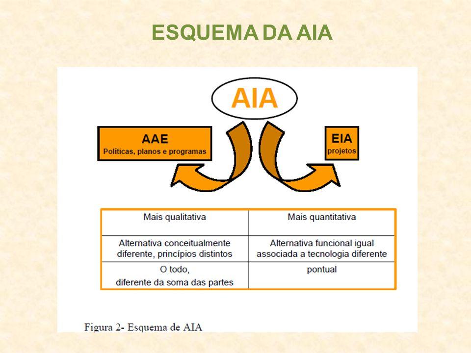 ESQUEMA DA AIA