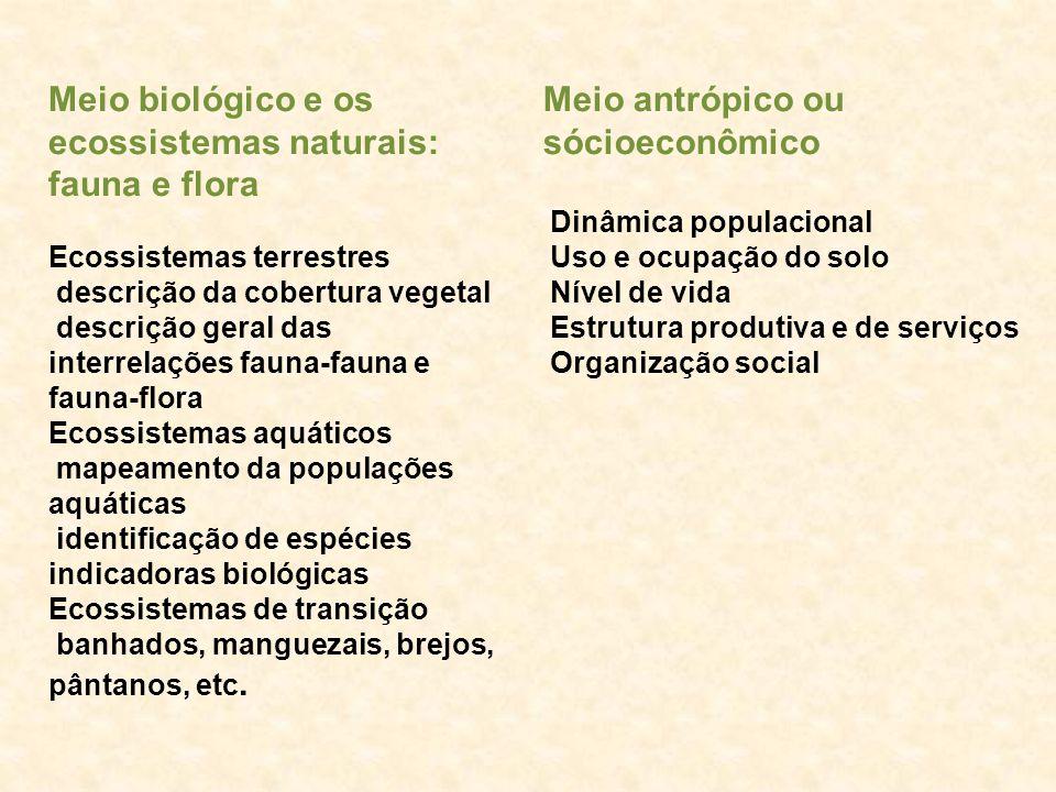 Meio biológico e os ecossistemas naturais: fauna e flora Ecossistemas terrestres descrição da cobertura vegetal descrição geral das interrelações faun