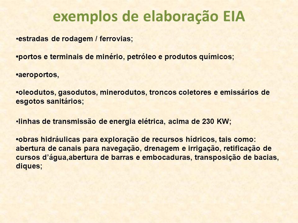 exemplos de elaboração EIA estradas de rodagem / ferrovias; portos e terminais de minério, petróleo e produtos químicos; aeroportos, oleodutos, gasodu