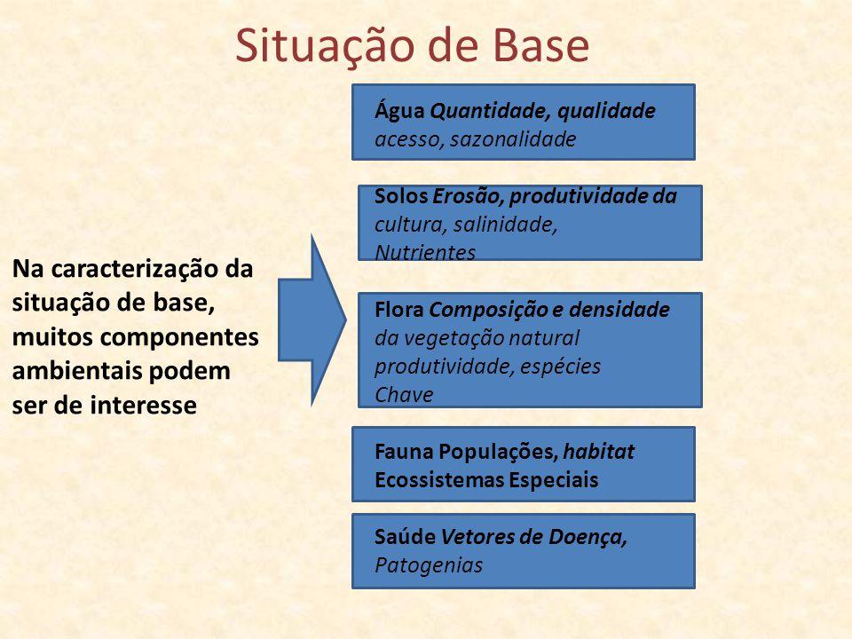 Situação de Base Na caracterização da situação de base, muitos componentes ambientais podem ser de interesse Água Quantidade, qualidade acesso, sazona