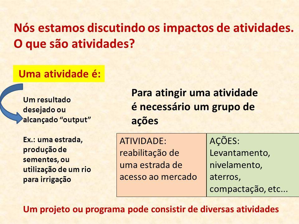 """Nós estamos discutindo os impactos de atividades. O que são atividades? Um resultado desejado ou alcançado """"output"""" Ex.: uma estrada, produção de seme"""