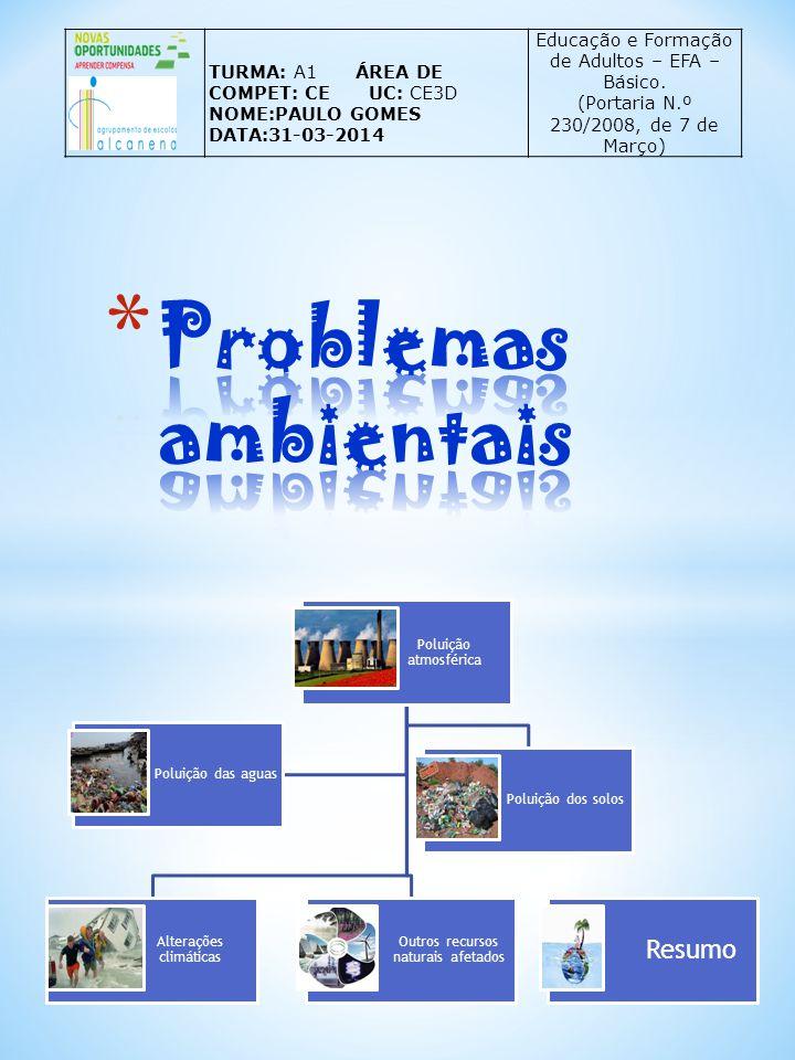 TURMA: A1 ÁREA DE COMPET: CE UC: CE3D NOME:PAULO GOMES DATA:31-03-2014 Educação e Formação de Adultos – EFA – Básico. (Portaria N.º 230/2008, de 7 de