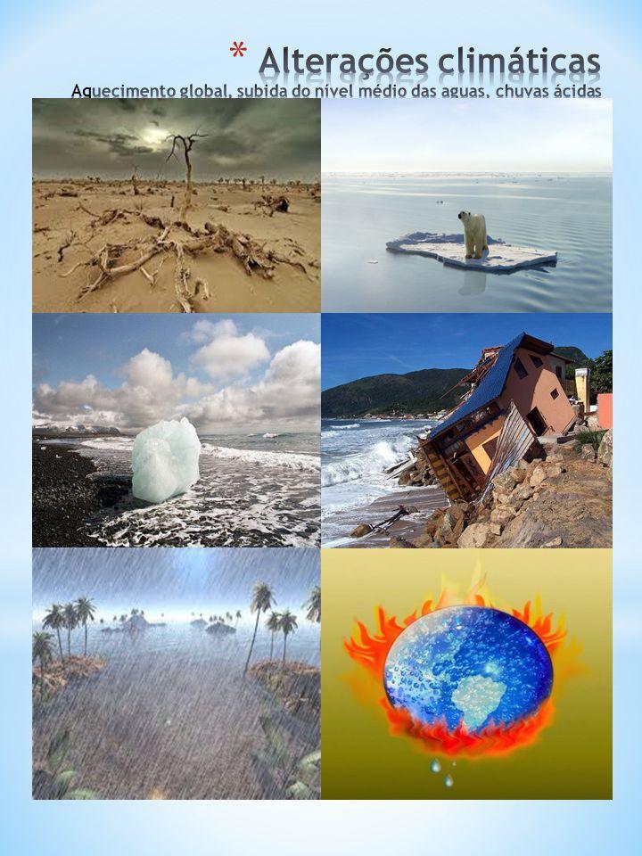 6 Outros recursos naturais afetados  A floresta A desflorestação e os fogos florestais são a causa de inúmeros problemas: redução da biodiversidade (extinção de populações ou espécies da flora e fauna), erosão, entre outros.