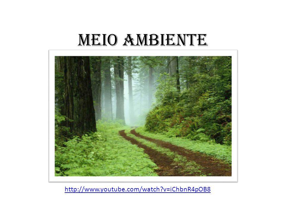 MEIO AMBIENTE http://www.youtube.com/watch?v=iChbnR4pOB8