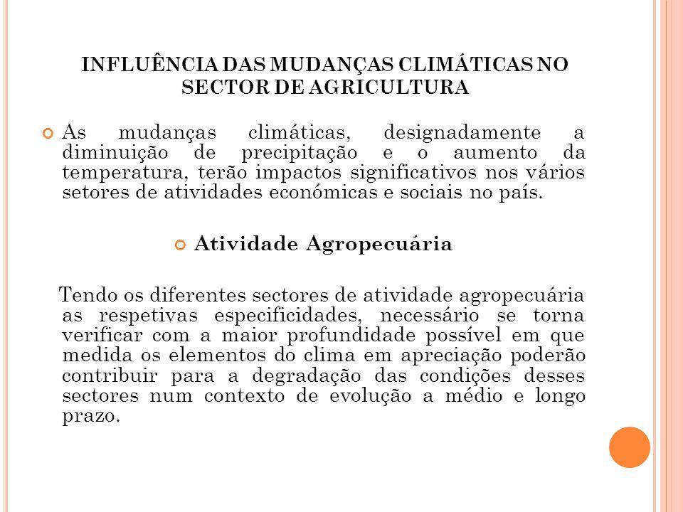 INFLUÊNCIA DAS MUDANÇAS CLIMÁTICAS NO SECTOR DE AGRICULTURA As mudanças climáticas, designadamente a diminuição de precipitação e o aumento da tempera