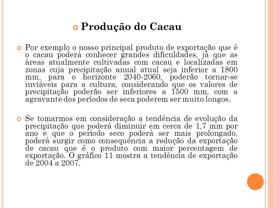 Produção do Cacau Por exemplo o nosso principal produto de exportação que é o cacau poderá conhecer grandes dificuldades, já que as áreas atualmente c