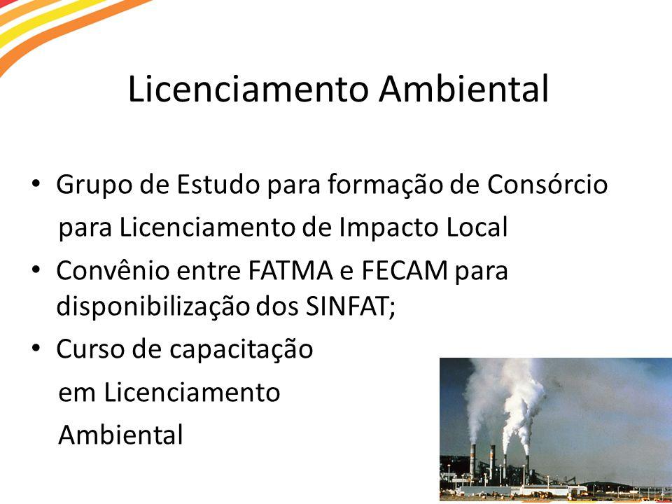 Licenciamento Ambiental Grupo de Estudo para formação de Consórcio para Licenciamento de Impacto Local Convênio entre FATMA e FECAM para disponibilização dos SINFAT; Curso de capacitação em Licenciamento Ambiental
