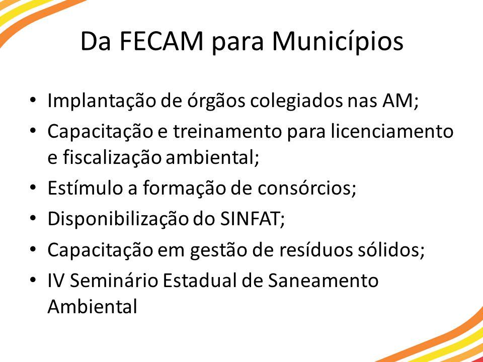 Da FECAM para Municípios Implantação de órgãos colegiados nas AM; Capacitação e treinamento para licenciamento e fiscalização ambiental; Estímulo a formação de consórcios; Disponibilização do SINFAT; Capacitação em gestão de resíduos sólidos; IV Seminário Estadual de Saneamento Ambiental