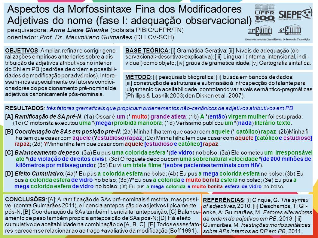 Aspectos da Morfossintaxe Fina dos Modificadores Adjetivas do nome (fase I: adequação observacional) pesquisadora: Anne Liese Glienke (bolsista PIBIC/