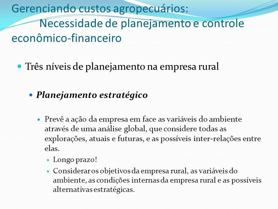 Três níveis de planejamento na empresa rural Planejamento estratégico Prevê a ação da empresa em face as variáveis do ambiente através de uma análise global, que considere todas as explorações, atuais e futuras, e as possíveis inter-relações entre elas.