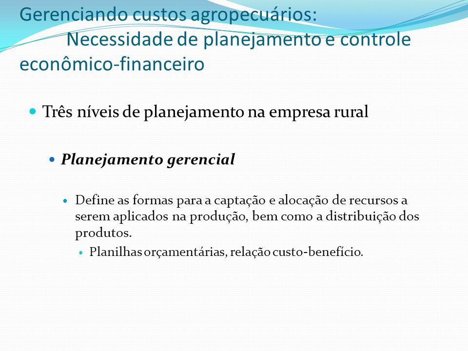 Três níveis de planejamento na empresa rural Planejamento gerencial Define as formas para a captação e alocação de recursos a serem aplicados na produção, bem como a distribuição dos produtos.