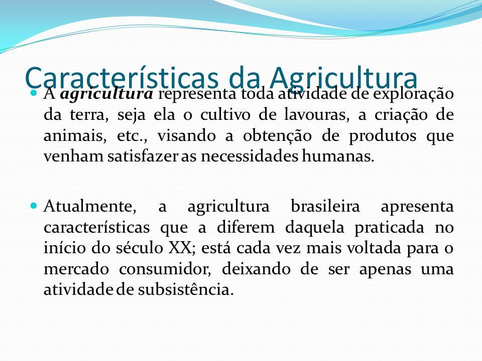 Características da Agricultura Devido a crescentes incrementos na procura de produtos primários, exige-se da agricultura altas taxas de crescimento baseado não só na sua expansão territorial mas, principalmente, na maior eficiência dos fatores de produção: terra, capital e trabalho.