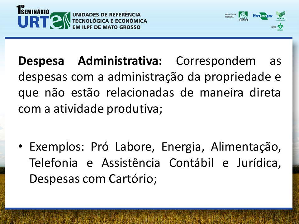 Despesa Administrativa: Correspondem as despesas com a administração da propriedade e que não estão relacionadas de maneira direta com a atividade pro