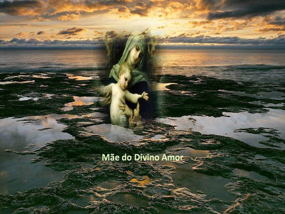 Texto – Internet – Música – Ave Maria Agnaldo Rayol – Imagens – Google Formatação – Altair Castro 22/01/2012