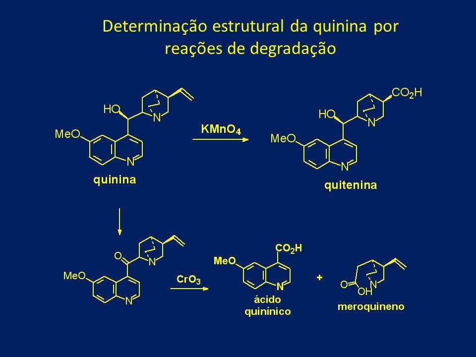 Confirmadas por síntese dos fragmentos obtidos