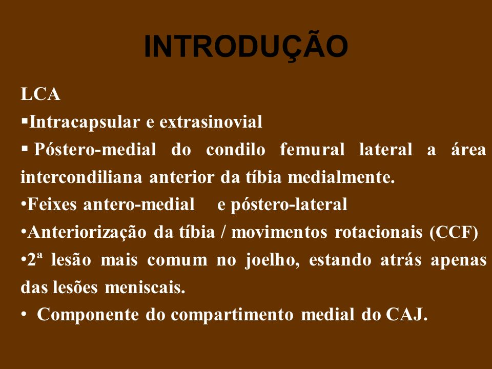 INTRODUÇÃO LCA  Intracapsular e extrasinovial  Póstero-medial do condilo femural lateral a área intercondiliana anterior da tíbia medialmente. Feixe