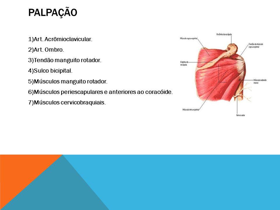 PALPAÇÃO 1)Art. Acrômioclavicular. 2)Art. Ombro. 3)Tendão manguito rotador. 4)Sulco bicipital. 5)Músculos manguito rotador. 6)Músculos periescapulares
