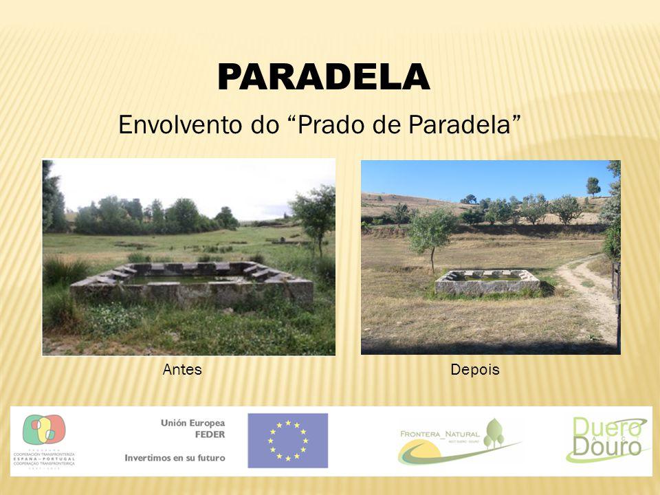 """PARADELA Envolvento do """"Prado de Paradela"""" AntesDepois"""