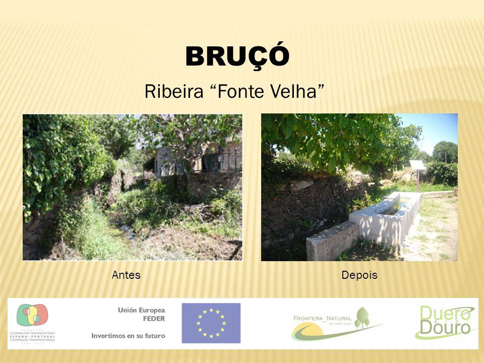 "BRUÇÓ Ribeira ""Fonte Velha"" AntesDepois"