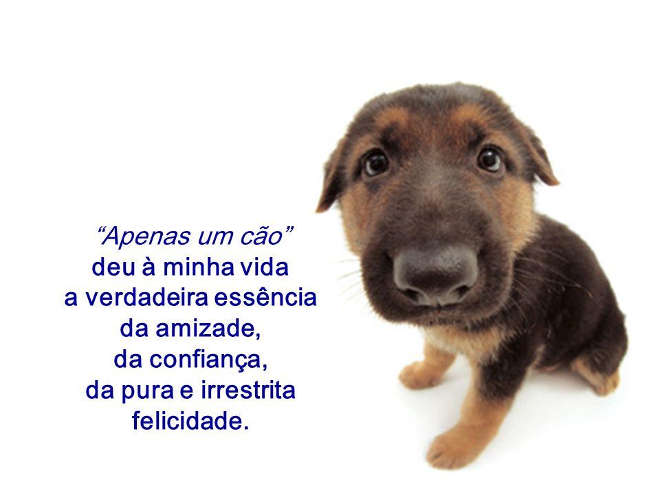 """""""Apenas um cão"""" deu à minha vida a verdadeira essência da amizade, da confiança, da pura e irrestrita felicidade."""