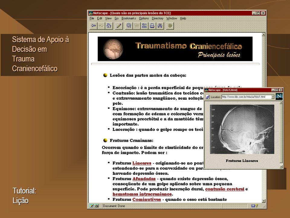 Sistema de Apoio à Decisão em Trauma Craniencefálico Tutorial: Lição
