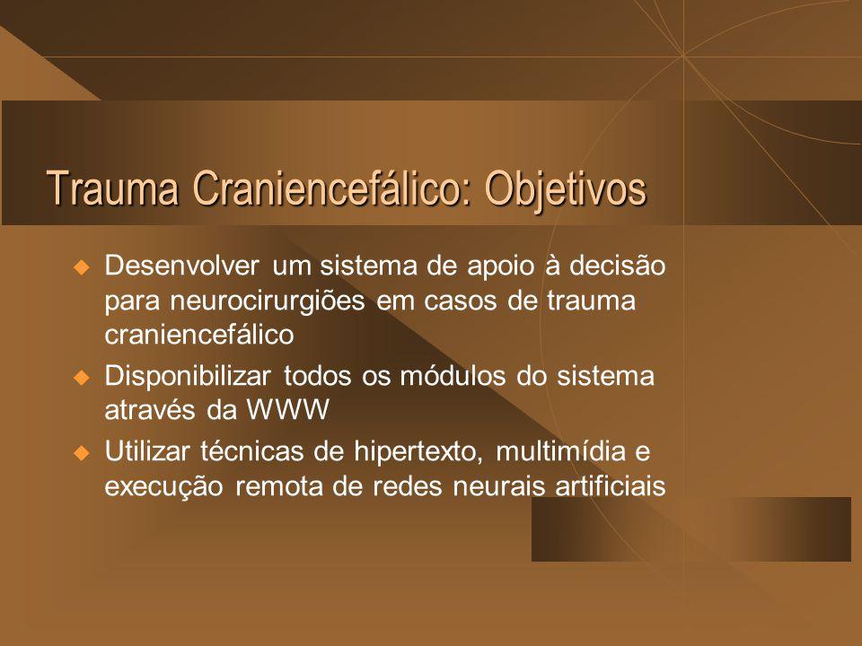 Trauma Craniencefálico: Objetivos  Desenvolver um sistema de apoio à decisão para neurocirurgiões em casos de trauma craniencefálico  Disponibilizar todos os módulos do sistema através da WWW  Utilizar técnicas de hipertexto, multimídia e execução remota de redes neurais artificiais