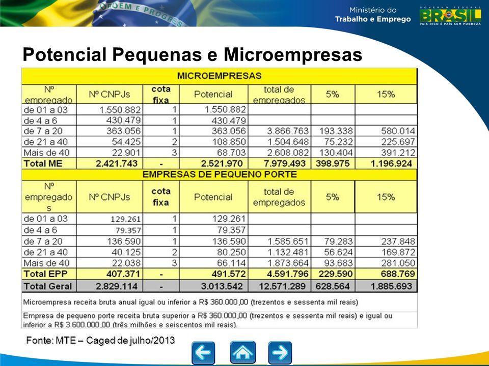 Potencial Pequenas e Microempresas Fonte: MTE – Caged de julho/2013