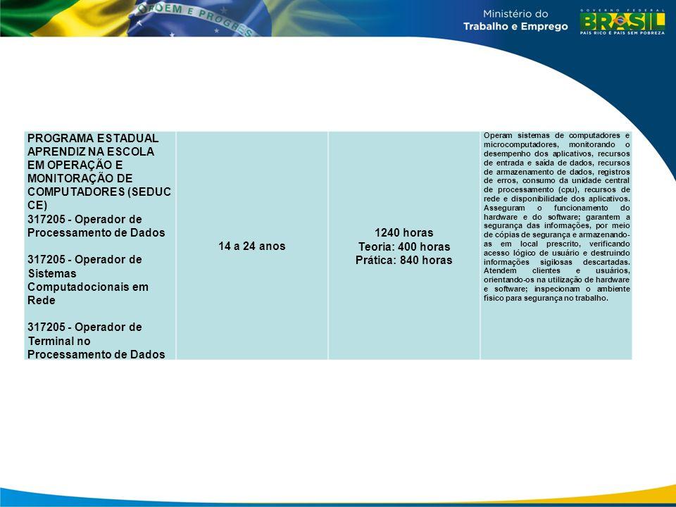 PROGRAMA ESTADUAL APRENDIZ NA ESCOLA EM OPERAÇÃO E MONITORAÇÃO DE COMPUTADORES (SEDUC CE) 317205 - Operador de Processamento de Dados 317205 - Operado