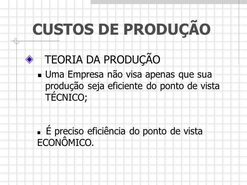 TEORIA DA PRODUÇÃO Uma Empresa não visa apenas que sua produção seja eficiente do ponto de vista TÉCNICO; É preciso eficiência do ponto de vista ECONÔ