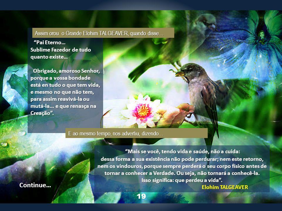 1 Pai Eterno… Sublime Fazedor de tudo quanto existe… Obrigado, amoroso Senhor, porque a vossa bondade está en tudo o que tem vida, e mesmo no que não tem, para assim reavivá-la ou mutá-la...